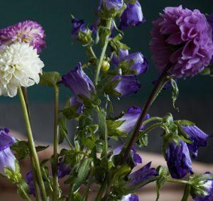 Chrysanthemen und Glockenblumen